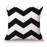 Classic Square 20-inch Throw Pillows