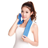 Cooler Sport Towel