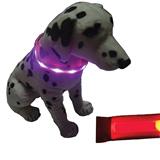 Imprinted LED dog collar