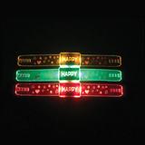 LED Wristlet