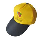 Promotion Traveling Hat