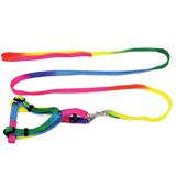 Rainbow Color Nylon Dog Rope