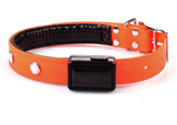 Solar Powered and Rechargeable LED Pet Collar