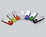 Swivel Style USB Flash Drive (2 GB)